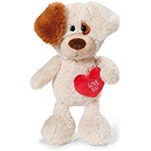 Perrito blanco con corazón rojo