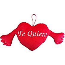 Cojín Te Quiero